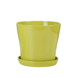 108 / 03 Cover pot + saucer Tropical Green 19cm 6 / box